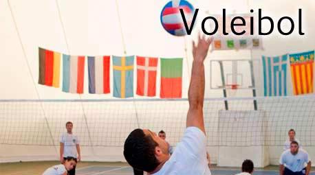 Extraescolar Voleibol