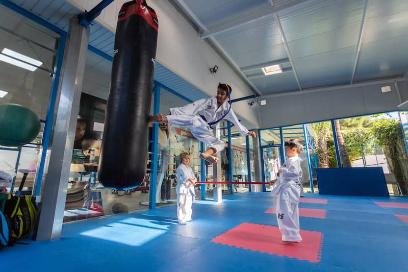 sello-vida-saludable-deporte-karate